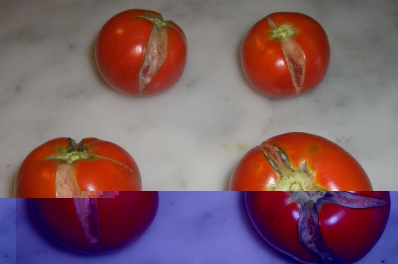 pomodori con spaccature